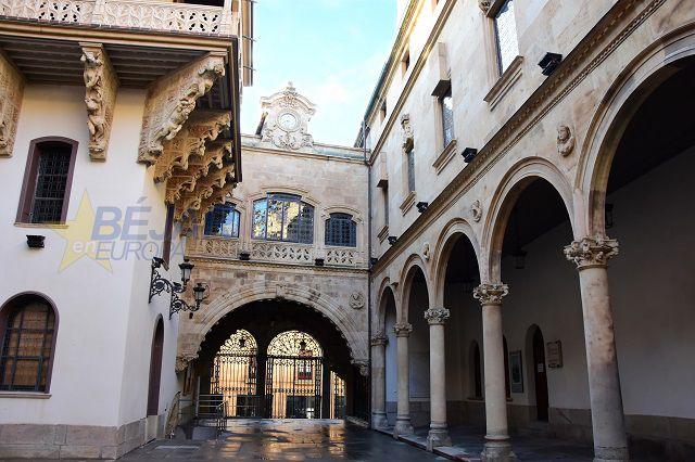 Patio Palacio la Salina. Diput. Salamanca